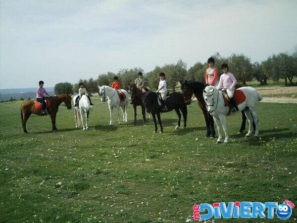 paseo-a-caballo-aranjuez-6